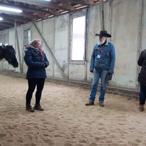 horsesense_coaching2